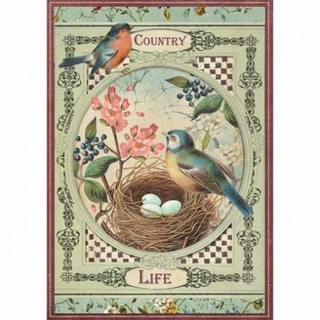 stamperia-papier-ryzowy-a4-country-life-ptaszki